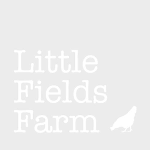 Little Fields Farm Stainless Steel Poultry Drinker 2ltr / 0.5 Gallon
