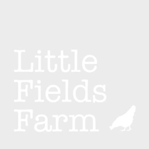 ETON Cottage Garden Trough Chicken / Poultry Feeder - Blue 30cm
