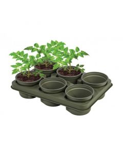 Garland Bio Based Growing Tray - Pack of 5