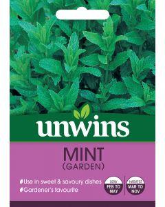 Herb Mint (Garden) Seeds
