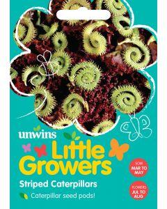 Little Growers Striped Caterpillars Seeds