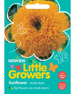 Little Growers Sunflower Teddy Bear Seeds