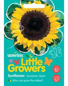 Little Growers Sunflower Sunshine Giant Seeds