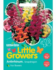 Little Growers Antirrhinum Snapdragon  Seeds