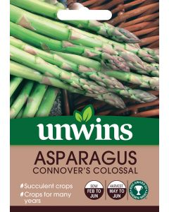 Asparagus Connover's Colossal Seeds
