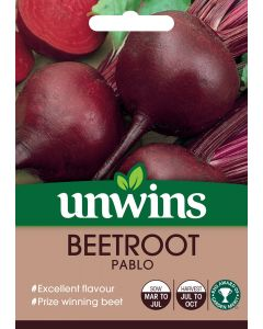 Beetroot (Round) Pablo Seeds