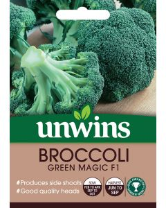 Broccoli (Calabrese) Green Magic F1 Seeds