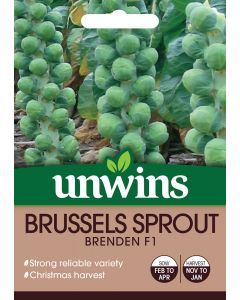 Brussels Sprout Brenden F1 Seeds