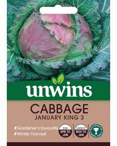 Cabbage (Round) January King 3 Seeds