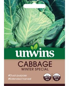 Cabbage (Spring Greens) Winter Special Seeds