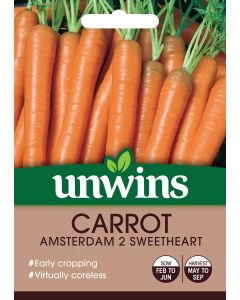 Carrot Amsterdam 2 Sweetheart Seeds
