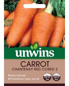 Carrot Chantenay Red Cored 2 Seeds