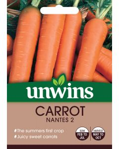Carrot Nantes 2 Seeds