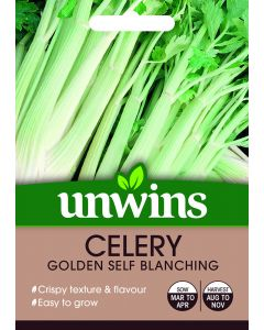 Celery Golden Self Blanching Seeds