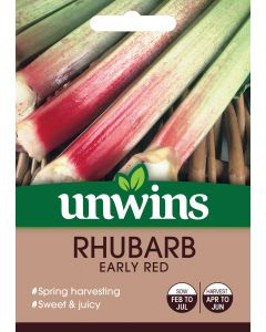 Rhubarb Early Red Seeds