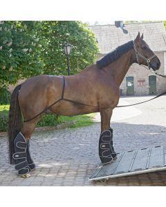 Waldhausen Horse loading aid