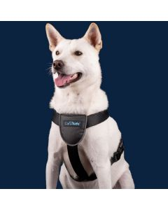 Carsafe Dog Travel Harness Small