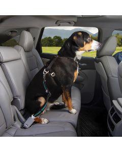 Kurgo Direct To Seatbelt Swivel Tether - Small - Blue