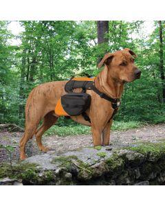 Kurgo Baxter Backpack - Black / Orange - 14kg - 38kg