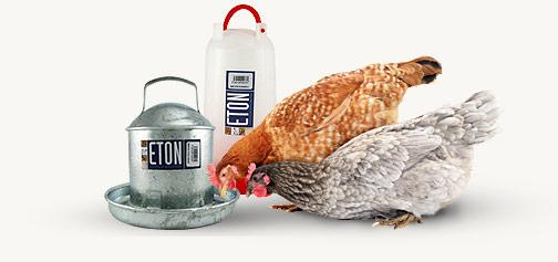 Poultry Drinkers | Eton drinkers