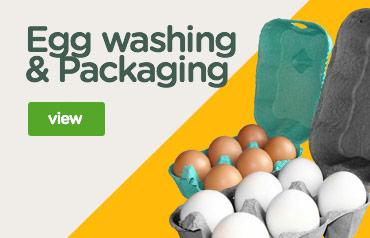 Egg washing & packaging