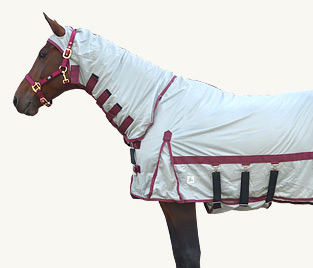 Equine | Rugs
