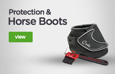 Protection & Horse Boots