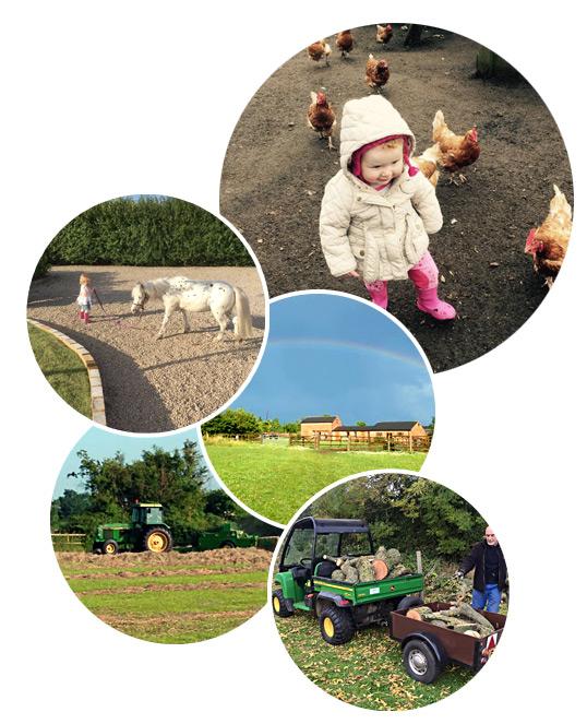 Little Fields Farm