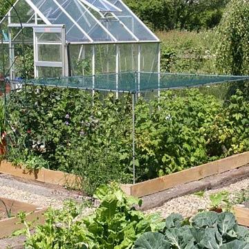Soft Fruit Cages